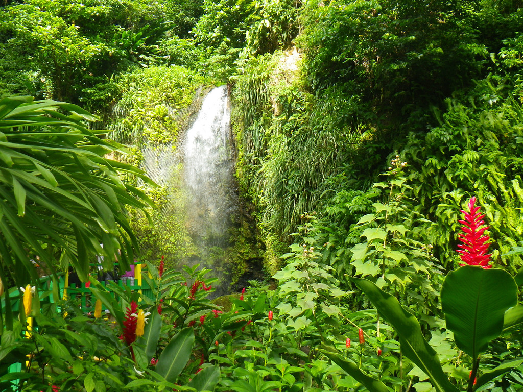Description of . Janet Podolak/JPodolak@News-Herald.com<p> Several gorgeous waterfalls are an easy walk from St. Lucia roadways and some of them beckon cooling dips.