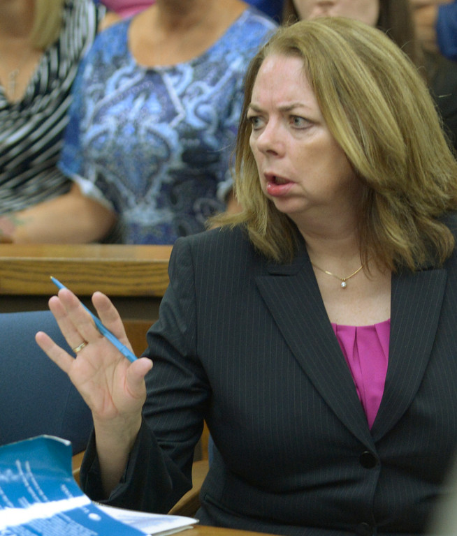 Description of . Jeff Forman/JForman@News-Herald.com Assistant Prosecutor Karen Kowall makes a point during Kevin Knoefel's sentencing Aug. 6 in Lake County Common Pleas Court for convincing his foster daughter to stab his wife to death.