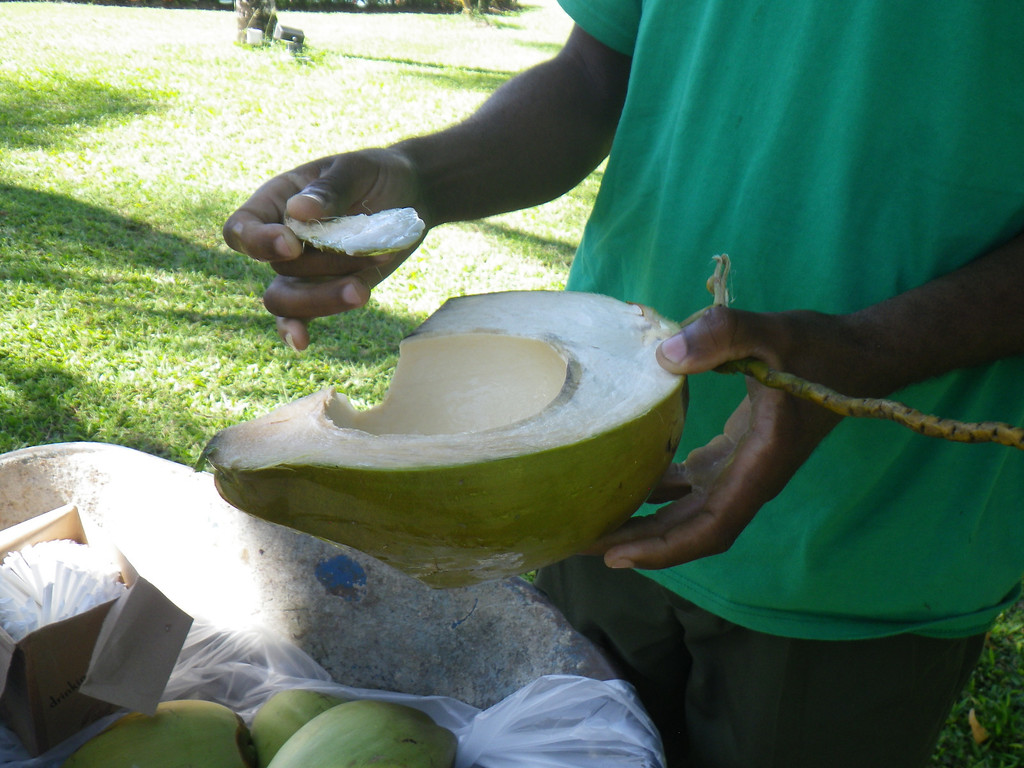 Description of . Janet Podolak/JPodolak@News-Herald.com<p>                                                                               A man with a wheelbarrow full of coconuts plies the grounds of Coconut Bay Resort offering coconut water and jelly from fruit he lops open with a machete.