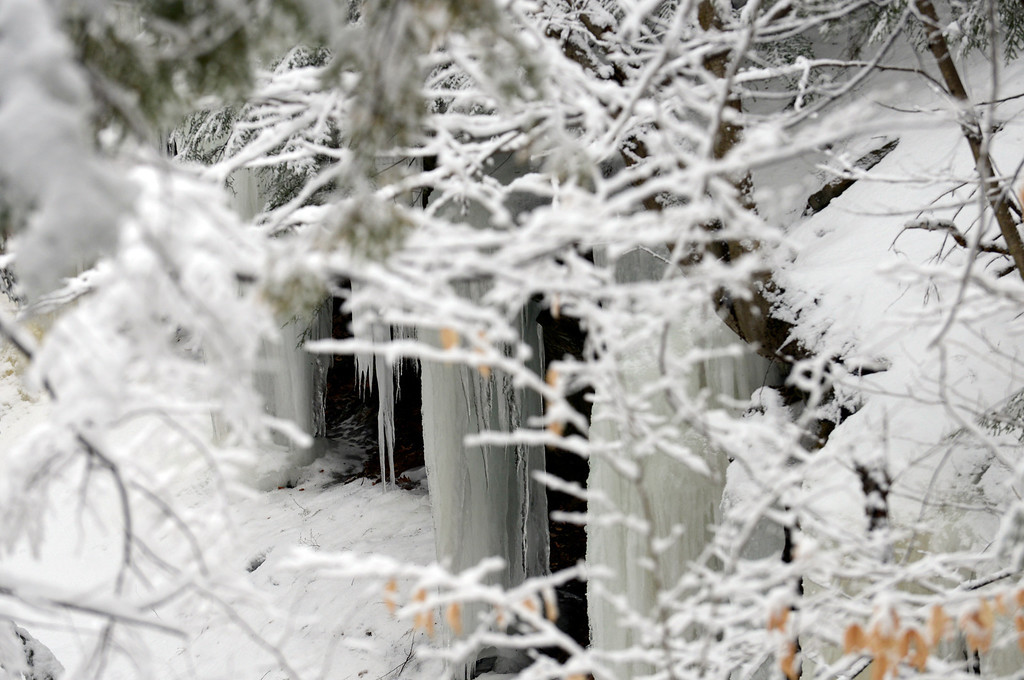 . Maribeth Joeright/MJoeright@News-Herald.com Huge icycle formations are framed by snow-covered trees at Lake Metroparks Penitentiary Glen in Kirtland. It is scenes like this that draw folks to visit the area during the winter.