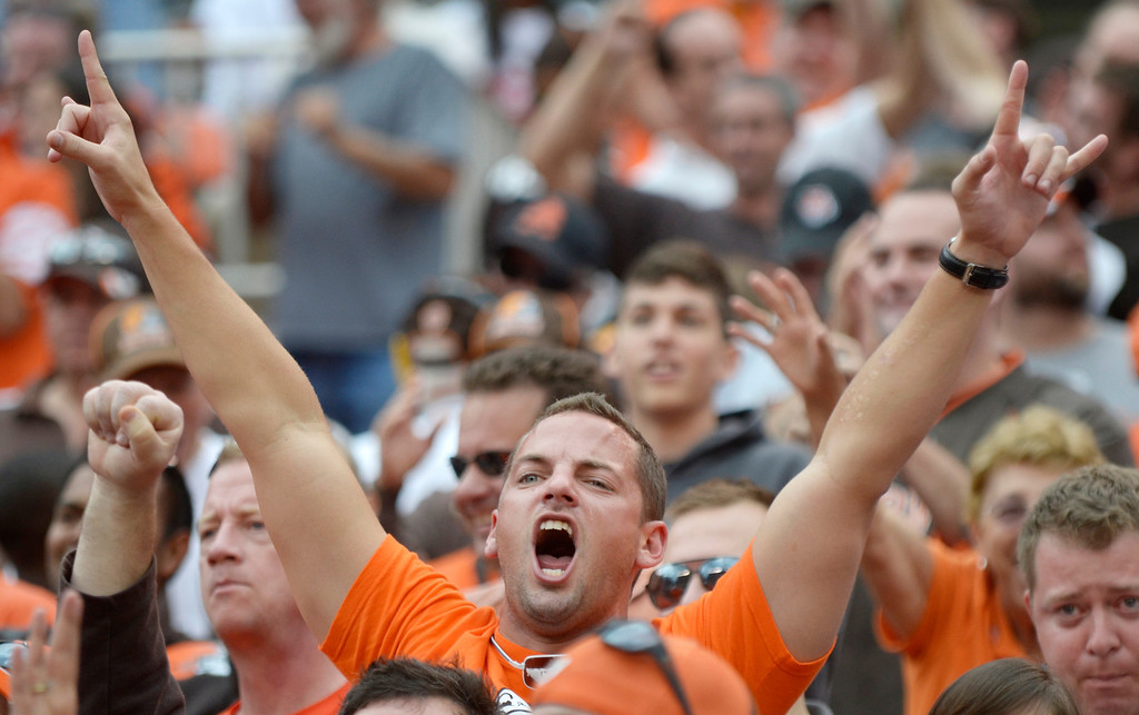 . Jeff Forman/JForman@News-Herald.com A fan cheers the  Browns in the final minutes of their 17-6 win Sunday over the Bengals at FirstEnergy Stadium