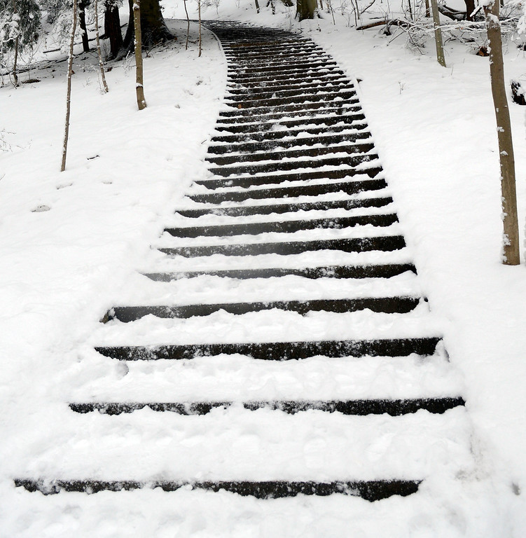 . Maribeth Joeright/MJoeright@News-Herald.com Snow covered steps lead the adventurous in and out of the gorge at Lake Metroparks Penitentiary Glen.