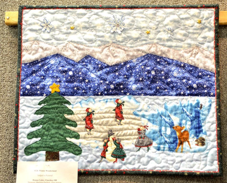 ". Jeff Forman/JForman@News-Herald.com \""Winter Wonderland\"" by Donna Cubic, of Chardon."